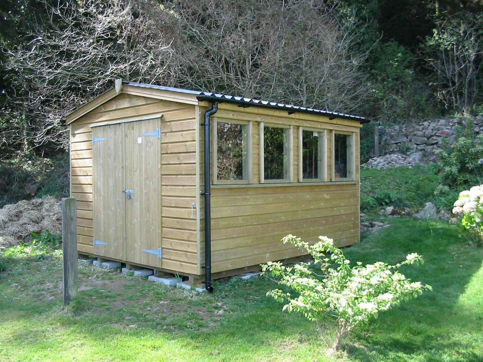 Wood clad shed with barn doors
